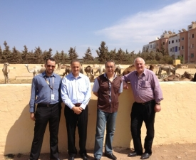 AUSTRALIAN_MADE_WORLD_RENOWNED_Roger_in_Morocco1