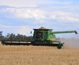 Header_in_Paddock_Business_Units_Farming1